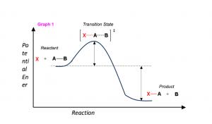 StudyOrgo.com - Graph 1