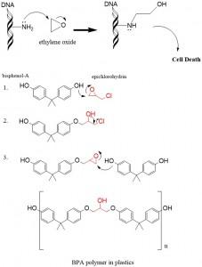 epoxide 3