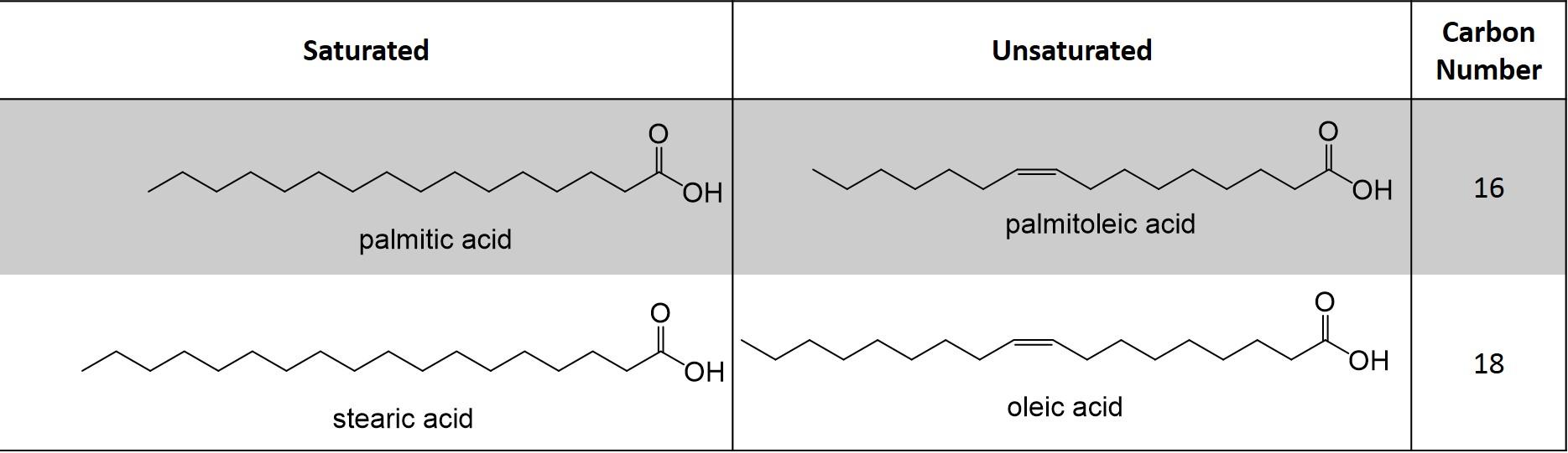 Lipid Figure 2