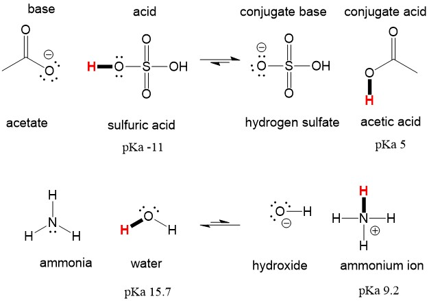 Reviewing Acid Base Definitions | Organic Chemistry Help
