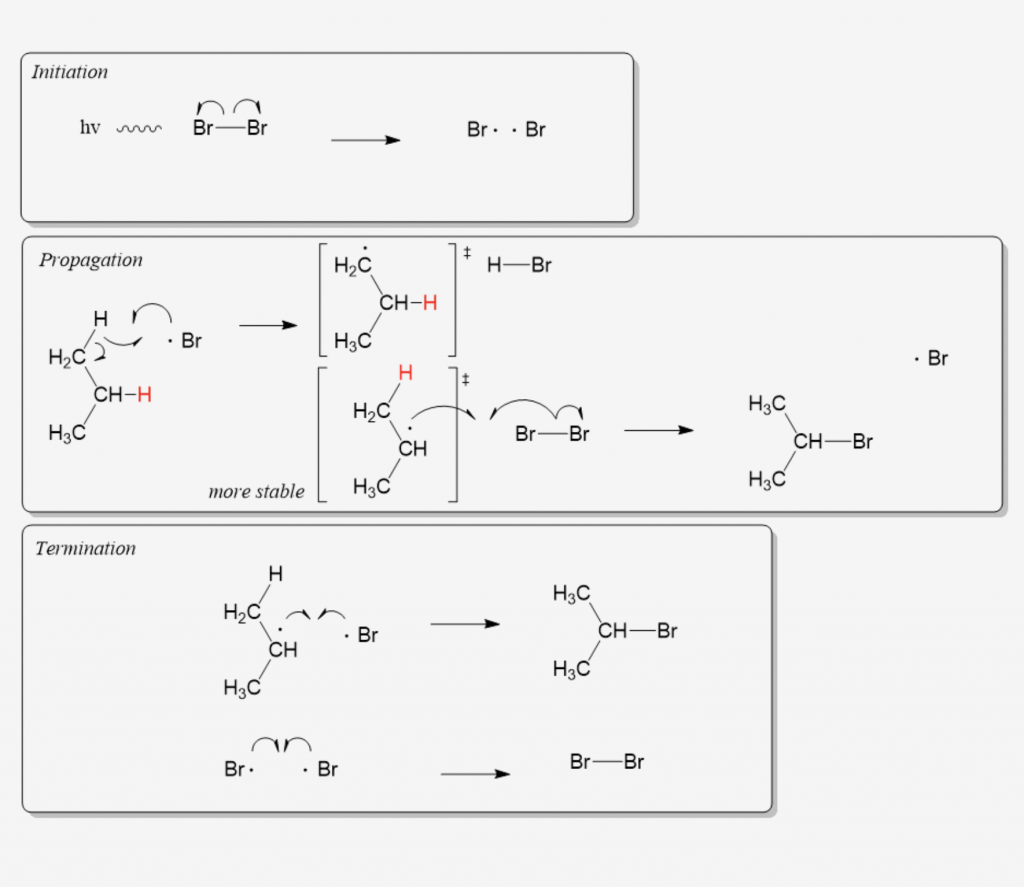 Organic Chemistry Quiz